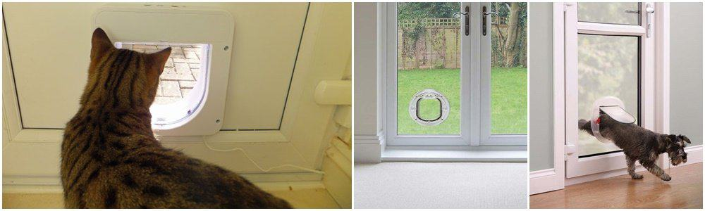 Fit, install cat, dog flap - Horsham, Crawley, Guildford